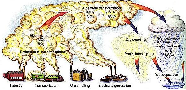 Tình trạng ô nhiễm môi trường