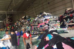 Thu mua vải cây tại Hà Nội