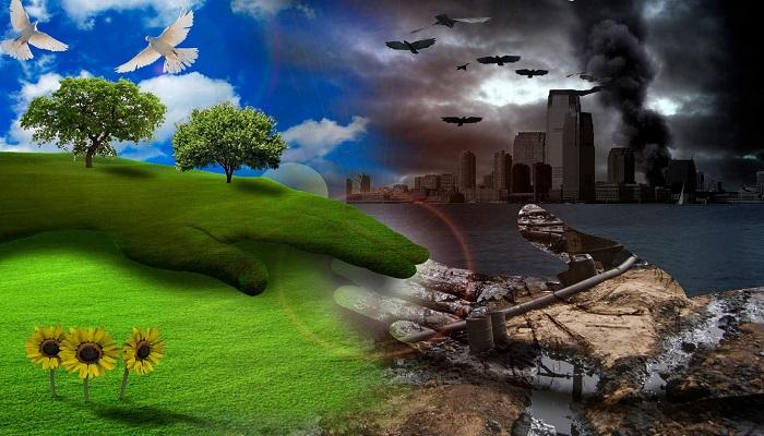 Công ty môi trường
