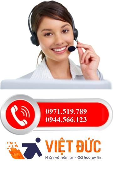hotline việt đức
